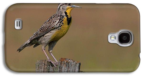 Western Meadowlark.. Galaxy S4 Case by Nina Stavlund