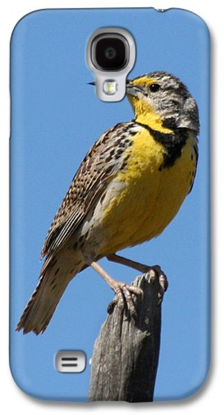 Western Meadowlark Perching Galaxy S4 Case by Bob and Jan Shriner