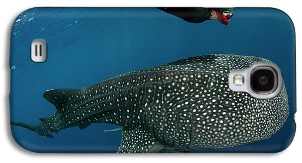 Whale Shark And Tourist Galaxy S4 Case by Pete Oxford