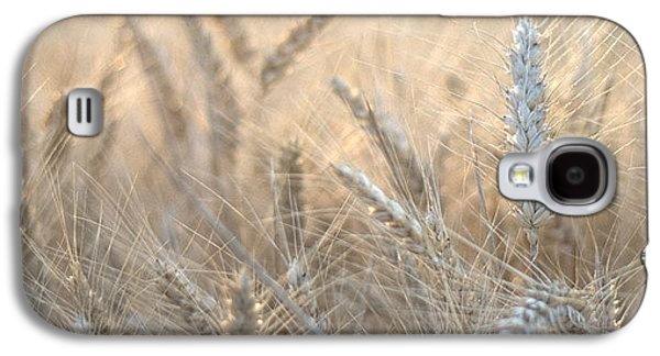 Beautiful Galaxy S4 Case - #wheat #france #rsa_ladies #rsa_nature by Georgia Fowler