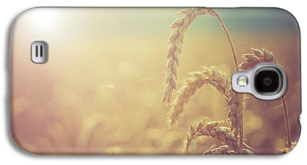 Wheat Growing In The Sunlight Galaxy S4 Case