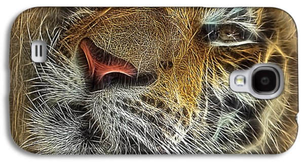 Whiskers Of The Tiger Galaxy S4 Case by Kaye Menner
