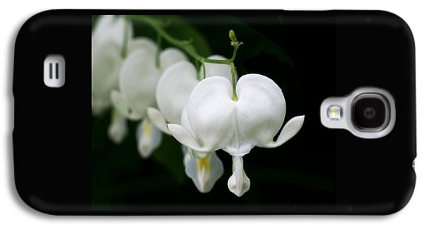 White Bleeding Hearts Galaxy S4 Case