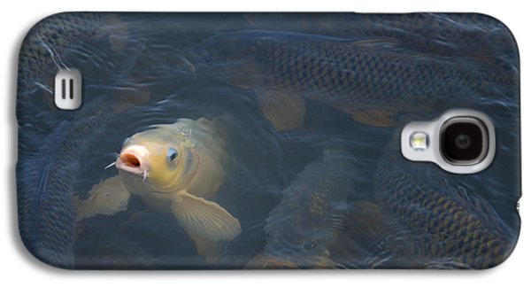 White Carp In The Lake Galaxy S4 Case