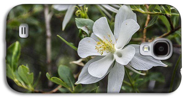 White Columbine Galaxy S4 Case by Aaron Spong
