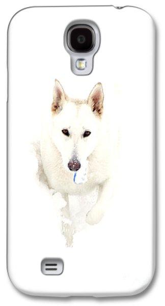 White German Shepherd In Snow Galaxy S4 Case by Thomas R Fletcher