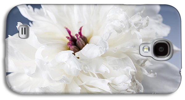 White Peony Flower  Galaxy S4 Case by Elena Elisseeva