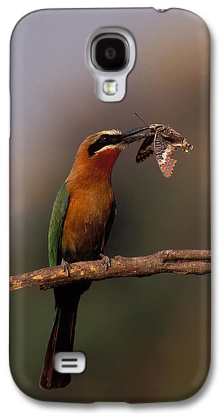 Whitefronted Bee-eater With Butterfly Galaxy S4 Case