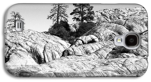 Willow Lake Number One Bw Galaxy S4 Case