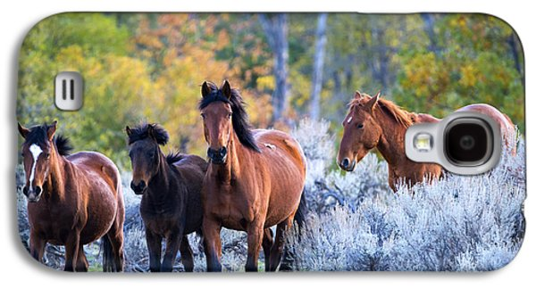 Wild Mustang Autumn Galaxy S4 Case by Mike Dawson