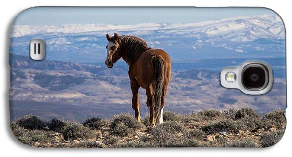 Wild Stallion Of Sand Wash Basin Galaxy S4 Case