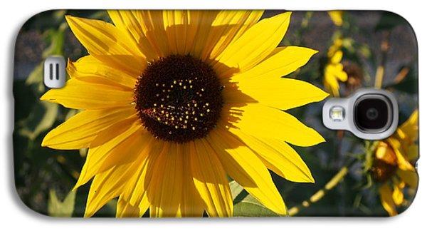 Wild Sunflower Galaxy S4 Case