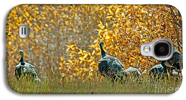 Wild Turkeys And Fall Colors Galaxy S4 Case by Robert Bales