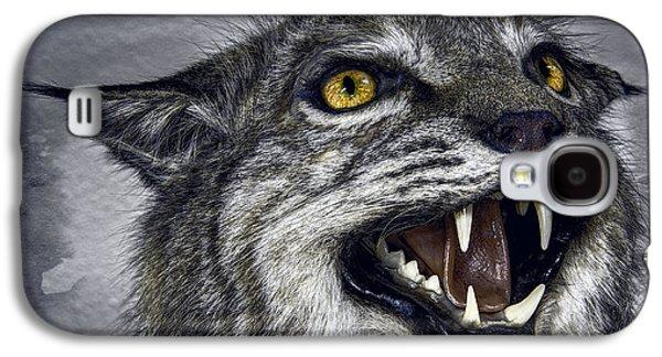 Wildcat Ferocity Galaxy S4 Case by Daniel Hagerman