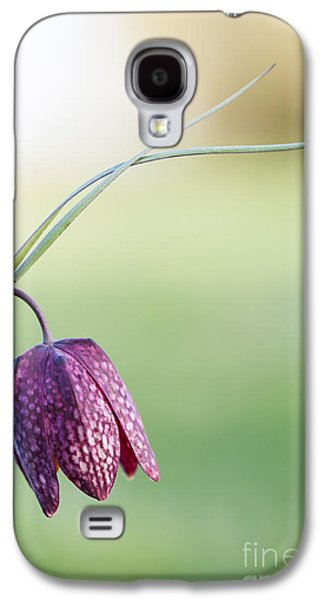 Wildflower Snakes Head Fritillary Galaxy S4 Case by Tim Gainey