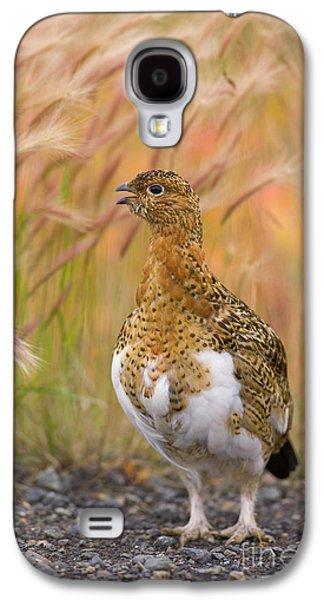 Willow Ptarmigan Yukon Galaxy S4 Case
