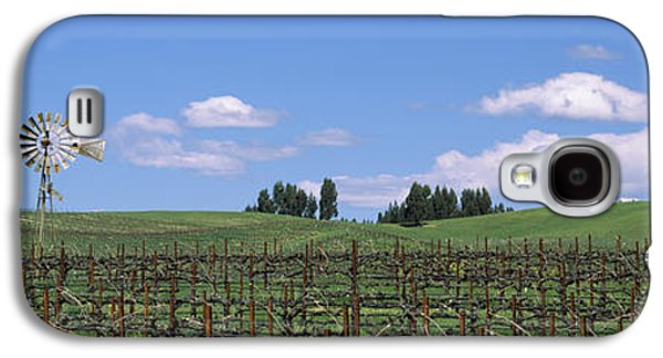 Windmill In A Vineyard, Napa County Galaxy S4 Case by Panoramic Images