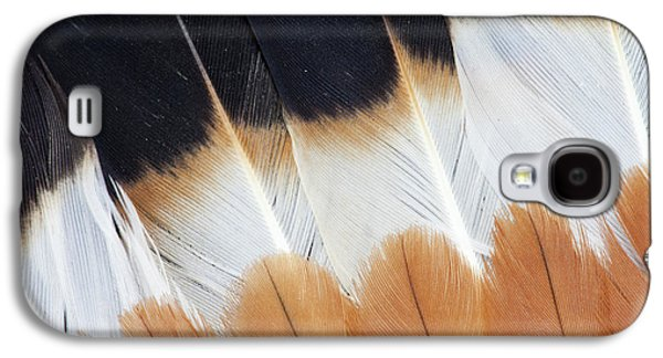 Wing Fanned Out On Northern Lapwing Galaxy S4 Case