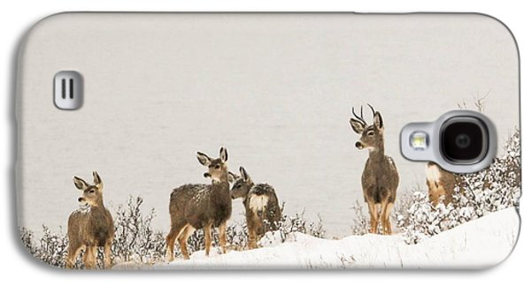 Winter Deer Galaxy S4 Case