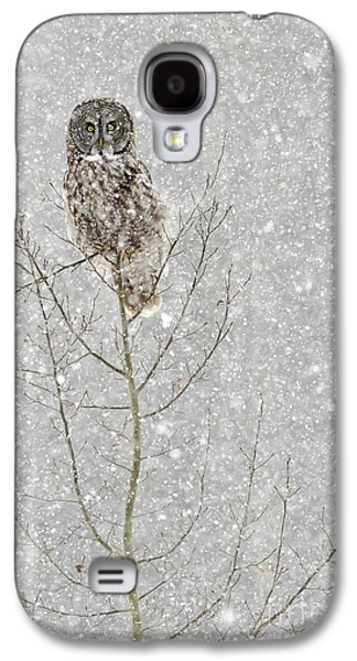 Winter Ghost Galaxy S4 Case