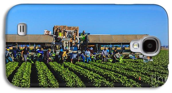 Winter Lettuce Harvest Galaxy S4 Case