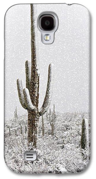 Winter Sonoran Style  Galaxy S4 Case