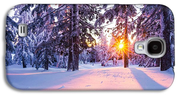Winter Sunset Through Trees Galaxy S4 Case by Priya Ghose