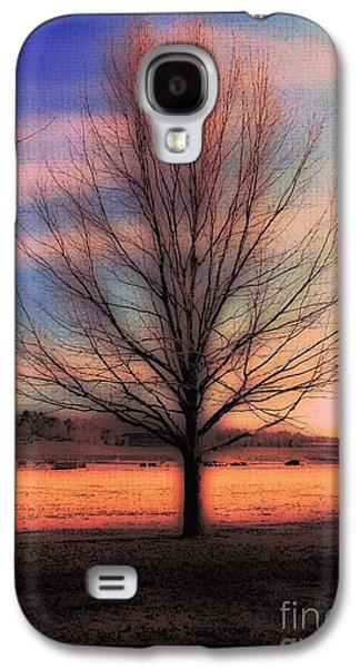 Winter Tree Galaxy S4 Case by Kathleen Struckle