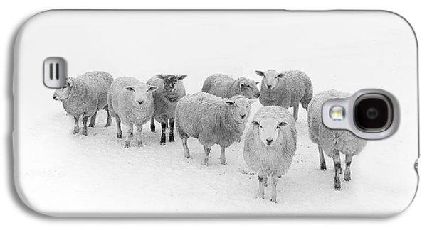 Rural Scenes Galaxy S4 Case - Winter Woollies by Janet Burdon