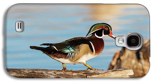 Wood Ducks (aix Sponsa Galaxy S4 Case