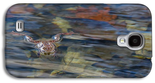 Wood Frog Square Galaxy S4 Case by Bill Wakeley