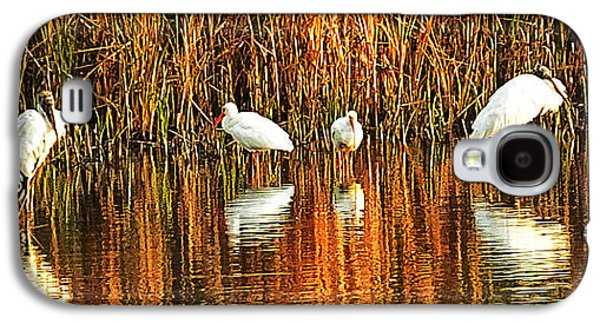 Wood Storks And 2 Ibis Galaxy S4 Case by Bill Barber