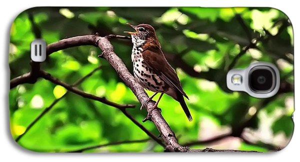 Wood Thrush Singing Galaxy S4 Case