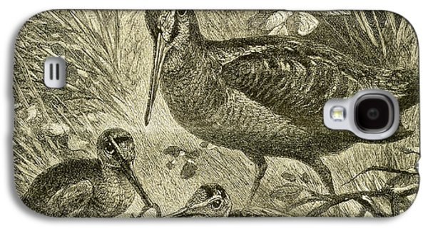 Woodcock Austria 1891 Galaxy S4 Case by Austrian School