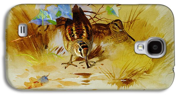 Woodcock In A Sandy Hollow Galaxy S4 Case by Celestial Images