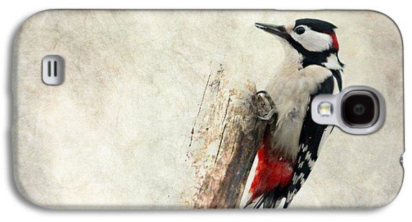 Woodpecker In Nature Galaxy S4 Case