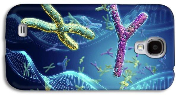 X And Y Chromosomes Galaxy S4 Case