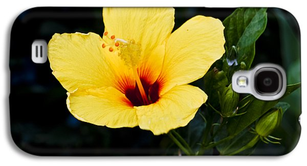 Yellow And Red Hibiscus Galaxy S4 Case