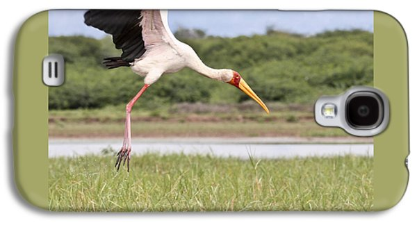 Yellow-billed Stork  Mycteria Ibis Galaxy S4 Case by Liz Leyden
