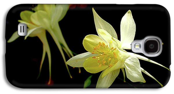 Yellow Columbine Galaxy S4 Case by Rona Black