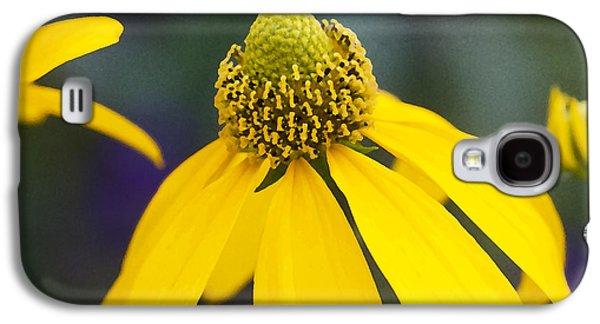 Yellow Cone Flower Rudbeckia Galaxy S4 Case by Rich Franco