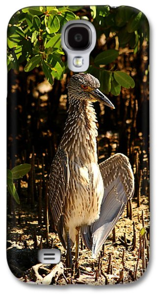 Yellow Crowned Night Heron Baby In The Mangroves Galaxy S4 Case