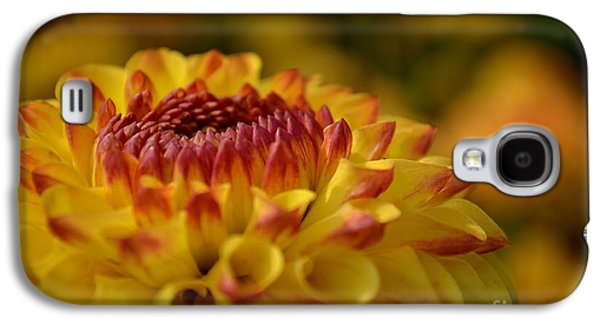 Yellow Dahlia Red Tips Galaxy S4 Case