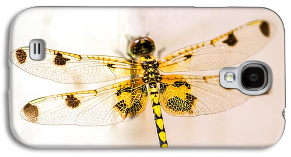 Dragon Galaxy S4 Case - Yellow Dragonfly Pantala Flavescens by Iris Richardson