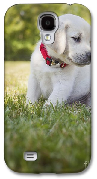 Yellow Lab Puppy In The Grass Galaxy S4 Case by Diane Diederich