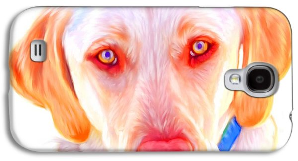 Yellow Labrador Dog Art With White Background Galaxy S4 Case by Iain McDonald