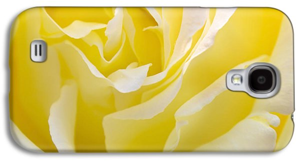 Rose Galaxy S4 Case - Yellow Rose by Svetlana Sewell