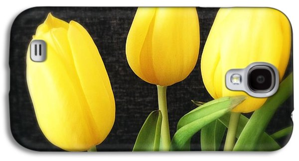 Bright Galaxy S4 Case - Yellow Tulips Black Background by Matthias Hauser