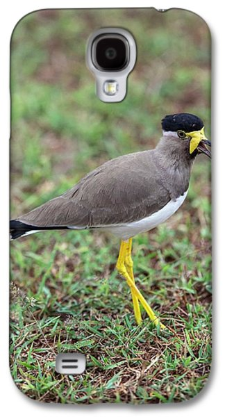 Yellow-wattled Lapwing Galaxy S4 Case by Peter J. Raymond