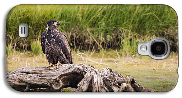 Young Eagle On A River Bed Galaxy S4 Case by Andres Leon